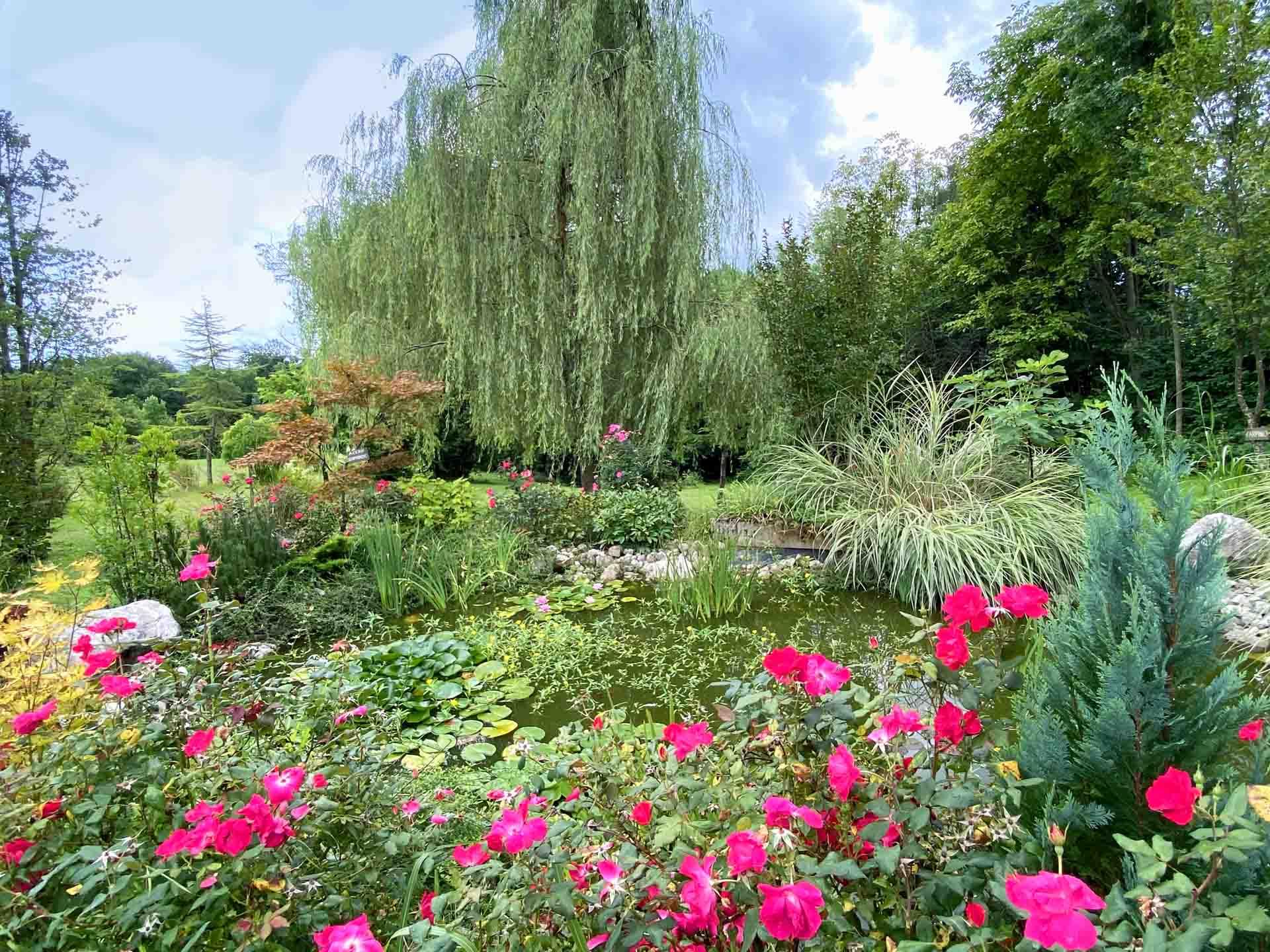 fattoria-dei-fiori-giardino